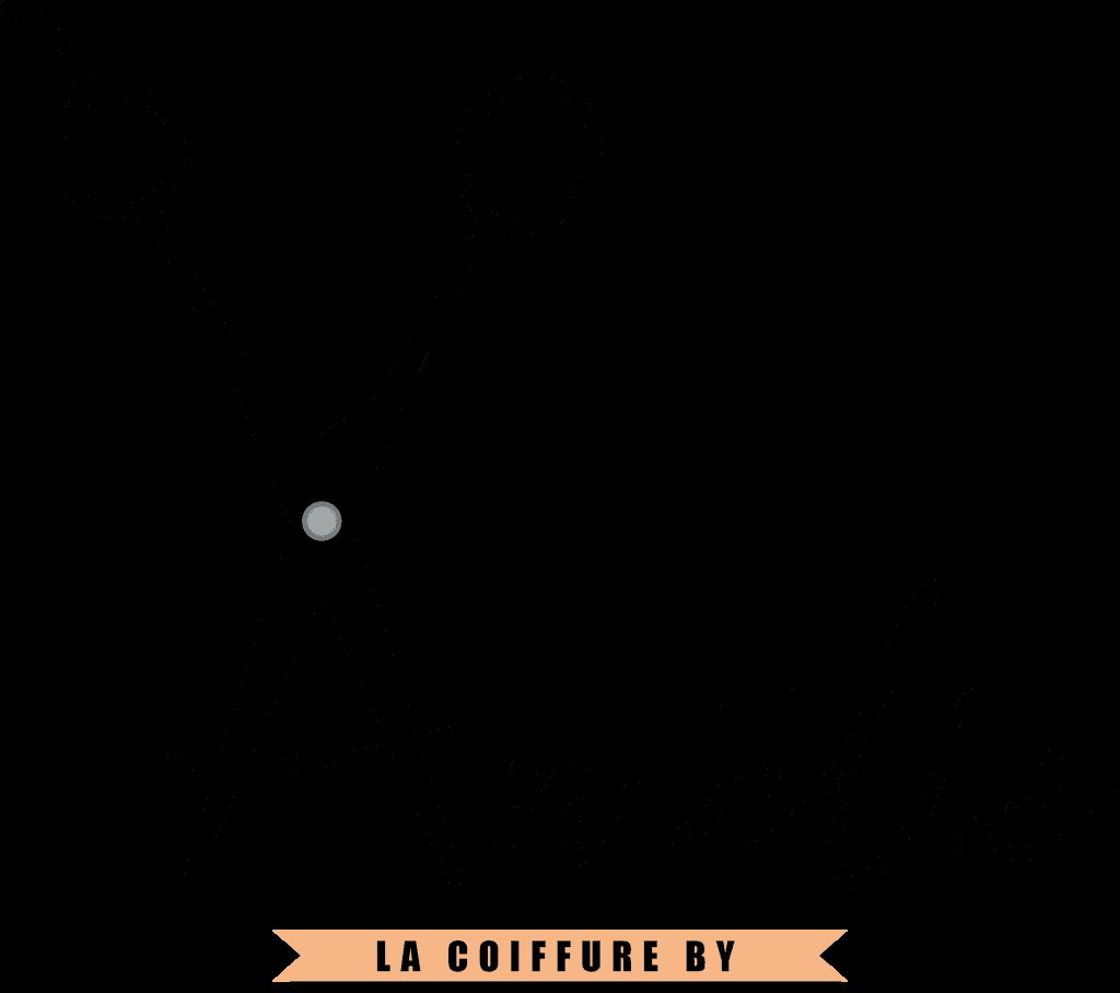 logo Amelie coiffeuse domicile La Rochelle